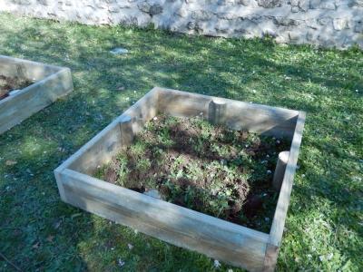 Création des bacs à légumes par le Conseil Municipal des Jeunes de Soyaux