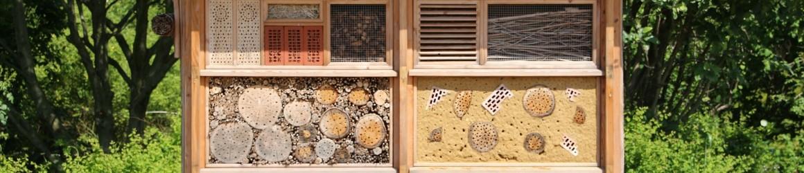 Les ruches ou hôtel à insectes