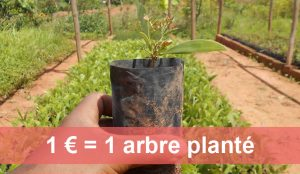 Association Planète Urgence : 1 euros = 1 arbre planté