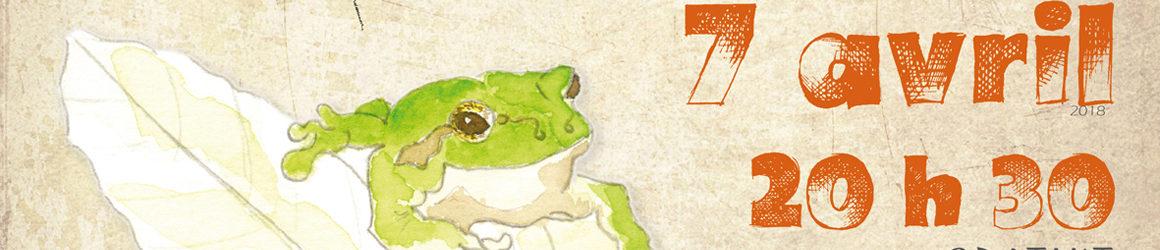 Découverte nocturne des amphibiens aux Brandes
