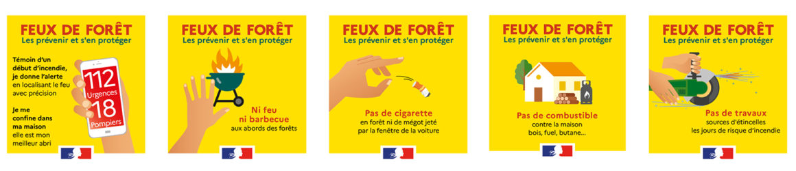Feux de forêt : préservons la végétation face aux incendies