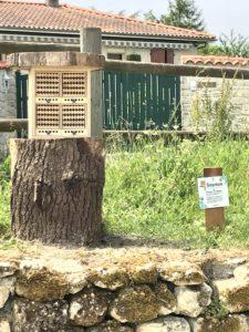 Dorlotoirs pour les abeilles sauvages