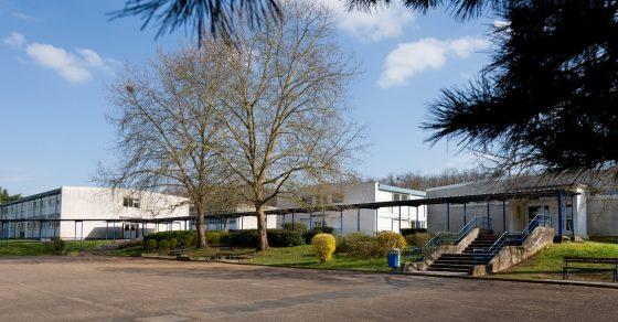 cour de collège, bâtiment, arbres