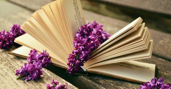 livres, fleurs violettes